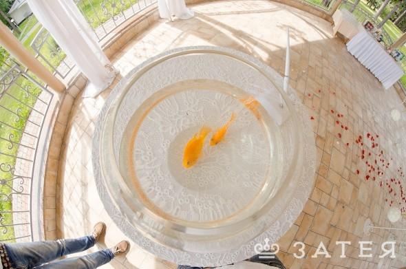 тематическая свадьба рыбки