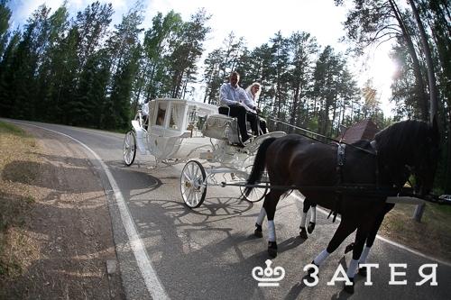 карета на свадьбу витебск